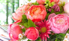 fiori freschi farli durare a lungo, fiori recisi farli durare a lungo