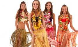 festa hawaiana fai da te, festa hawaiana accessori, festa hawaiana idee