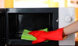 pulizia, forno, microonde