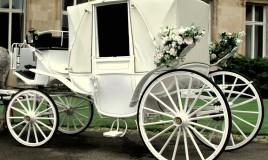 carrozza