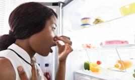come togliere cattivi odori frigorifero, cattivi odori frigo, come eliminare cattivi odori frigorifero