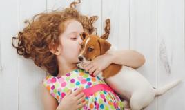 animali domestici, bambini, quali i migliori