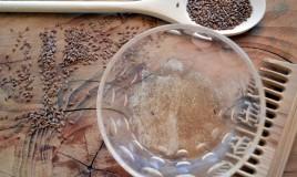 rimedi naturali, gel semi lino, come farlo