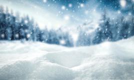 frasi neve romanzi