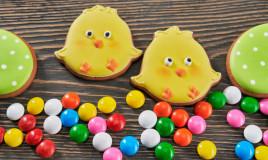 biscotti pasqua pulcino