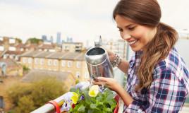 come mantenere umida terra vasi, terra umida vasi