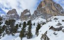trentino-montagna-bosco-neve-inverno-vacanze