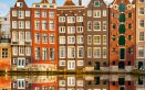 Olanda, Amsterdam, tulipani, arte