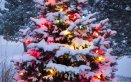 Natale offerte viaggi albero addobbi decorazioni