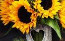 decoupage, hobby, fai da te, carta, fiori, girasole