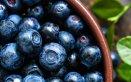 Le proprietà del mirtillo sono tante: diuretiche, anti-diabetiche, toniche, astringenti.