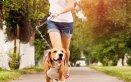 cane jogging moto salute benessere
