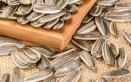 semi di girasole proprietà