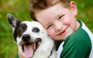 Voglia di un cucciolo? Le razze dei cani più adatte ai tuoi bambini