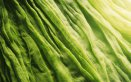 look verde greenery colore dell'anno 2017, pantone 2017 greenery come inserire nel look il colore dell'anno 2017, pantone grenery 2017 abbigliamento