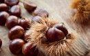come conservare castagne a lungo, conservare castagne fresche