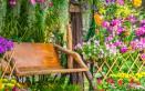 fiori estivi giardino, fiori estivi