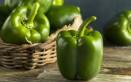 peperoni verdi, forno, come cucinari