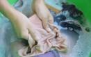 come lavare mutande a mano, come lavare slip, come lavare biancheria