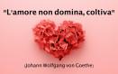 san valentino, immagini con frasi, amore