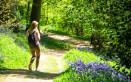 passeggiata bosco perché