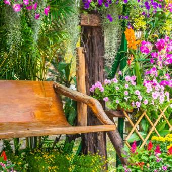 Sognare la nonna morta significato e interpretazioni donnad - Fiori da giardino estivi ...