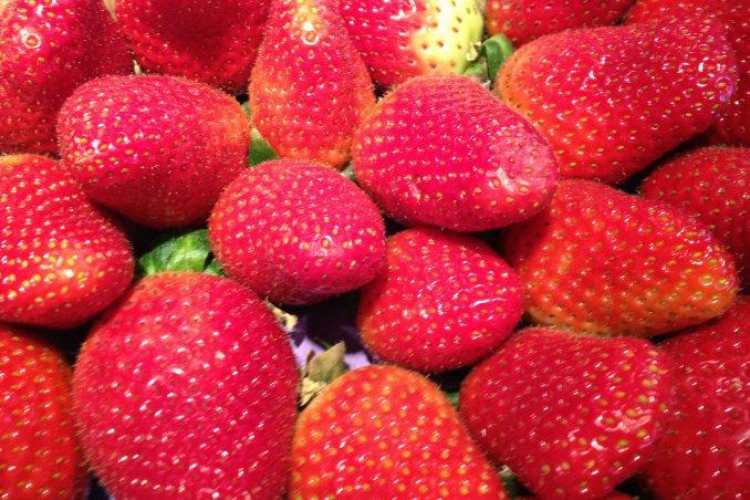 fragola proprietà primizia frutto rosso