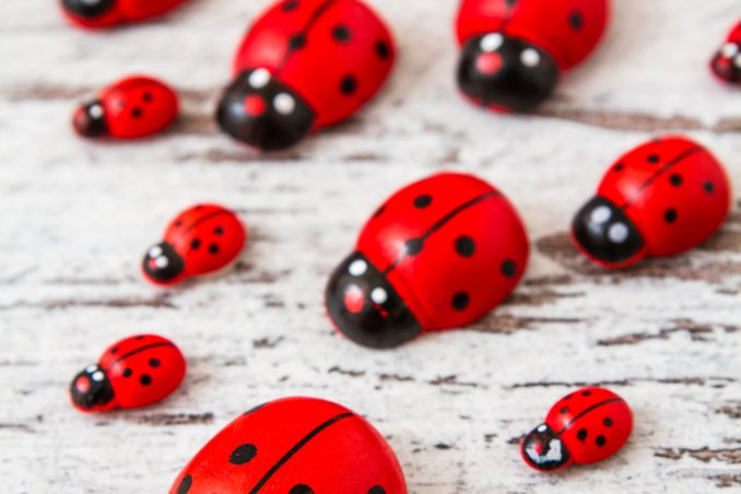 coccinelle decorazione decoupage