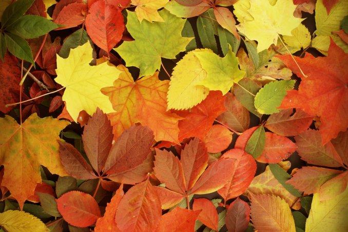 viaggi autunno destinazioni boston Saintes - Maries de la Mer il Lago Maggiore Isole Borromee