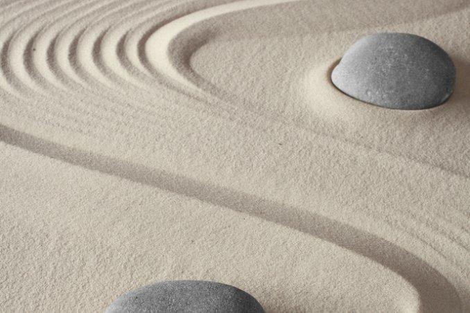 Il giardino zen donnad for Giardino zen piante