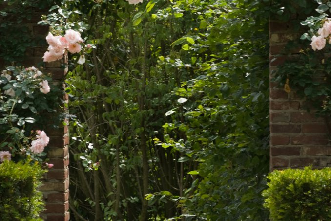 Il giardino decorativo verticale