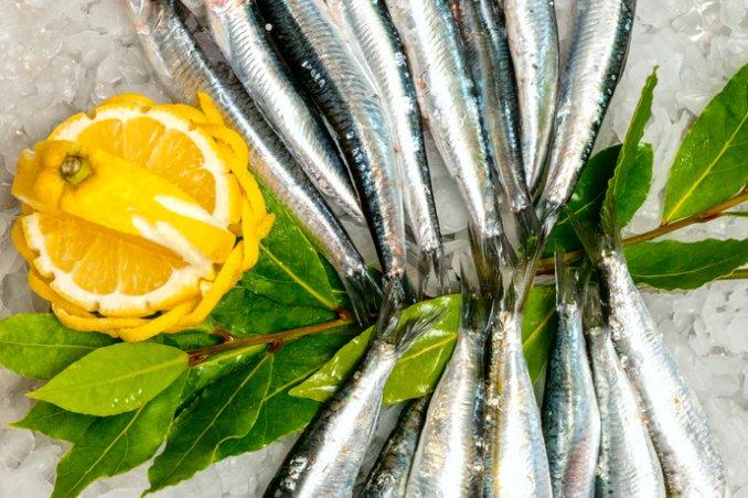 pesce azzurro caratteristiche pulizia proprietà