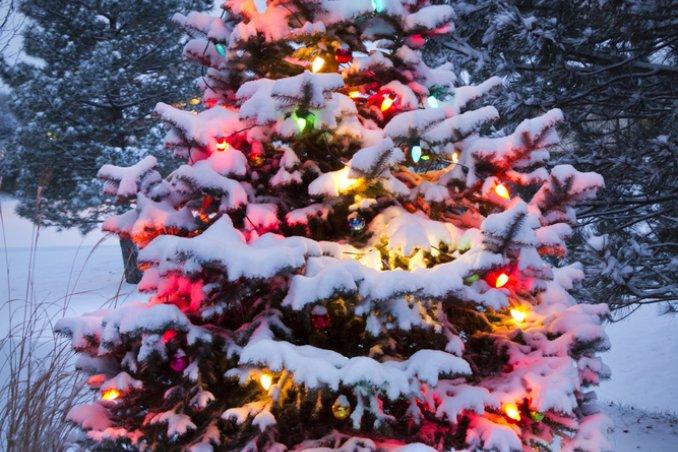 Sognare addobbi natalizi donnad - Addobbi natalizi per cucina ...