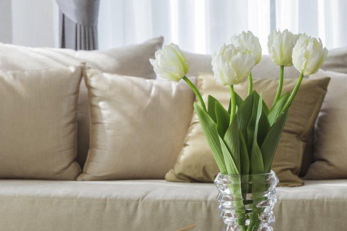 togliere macchie dal divano