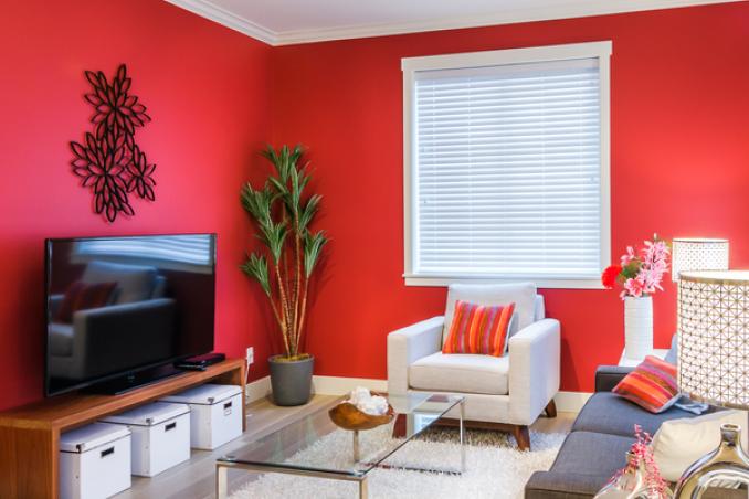 Come pulire le pareti di casa dalla muffa donnad - Come pulire casa ...