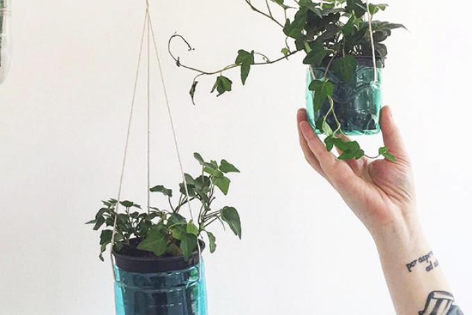 Costruire un giardino verticale in casa utilizzando le - Giardino verticale in casa ...