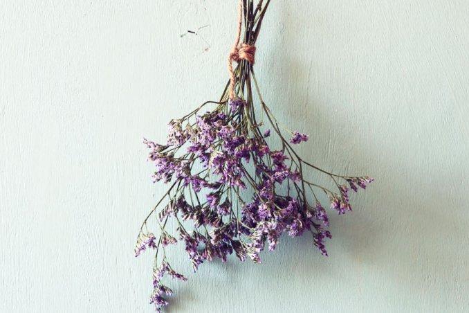 come essiccare fiori