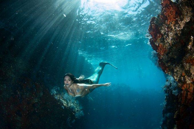 Scuole Per Sirene Come Imparare A Essere Una Creatura Del Mare Donnad