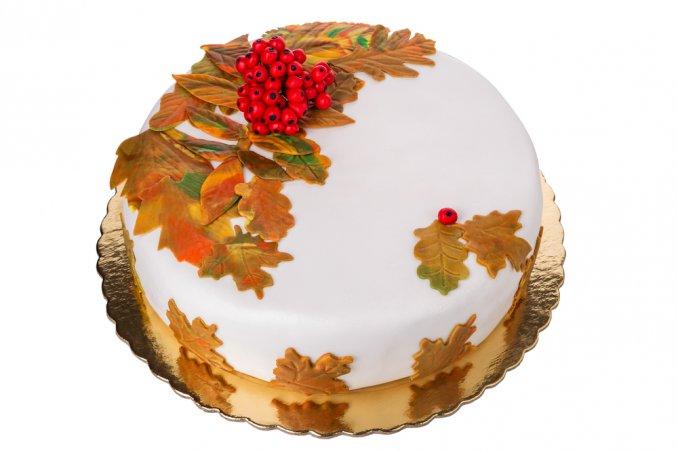 Torte Per L 39 Autunno 5 Decorazioni In Pasta Di Zucchero