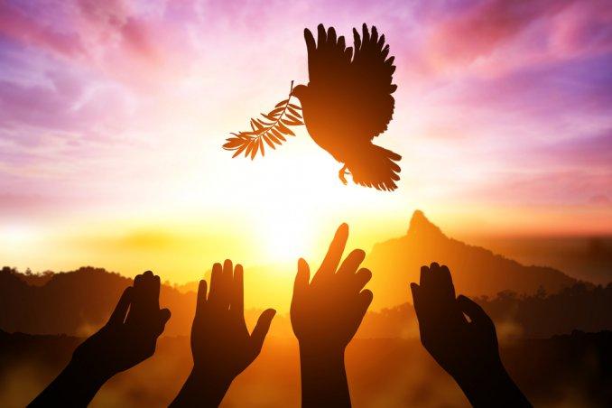 giornata della pace le frasi più belle da condividere donnad