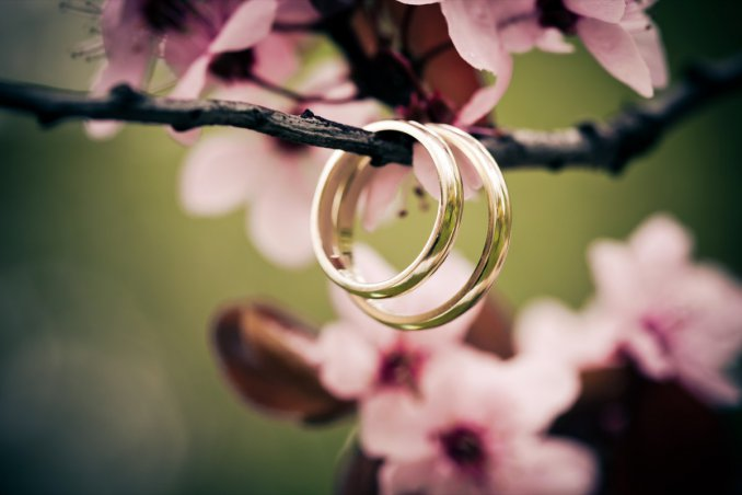matrimonio, fedi, fiori di arancio