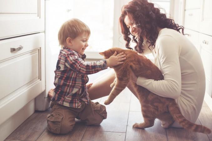 animali domestici. bambini, prendersi cura