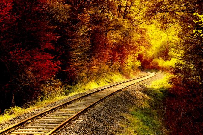 treno foliage 2018, treno foliage percorso, treno foliage date