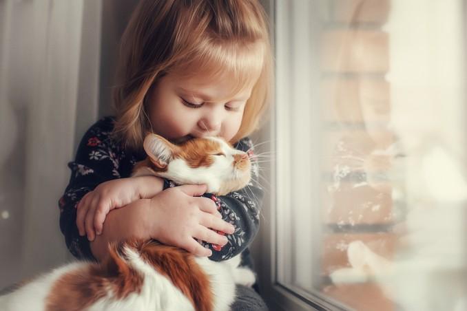 Gatti E Bambini Le Razze Più Adatte Donnad
