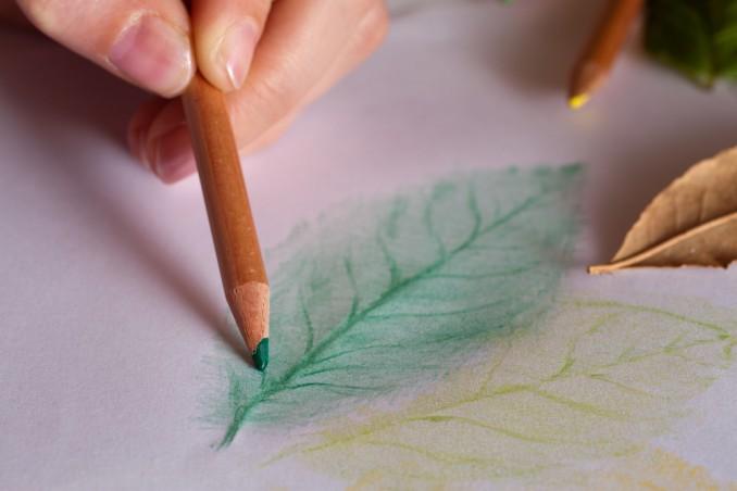 frottage con foglie