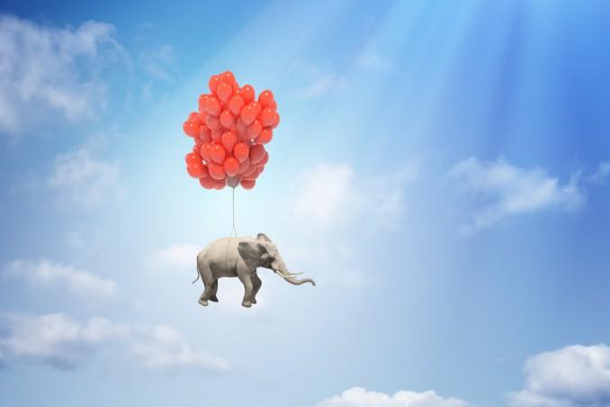 sogni, elefante, significato