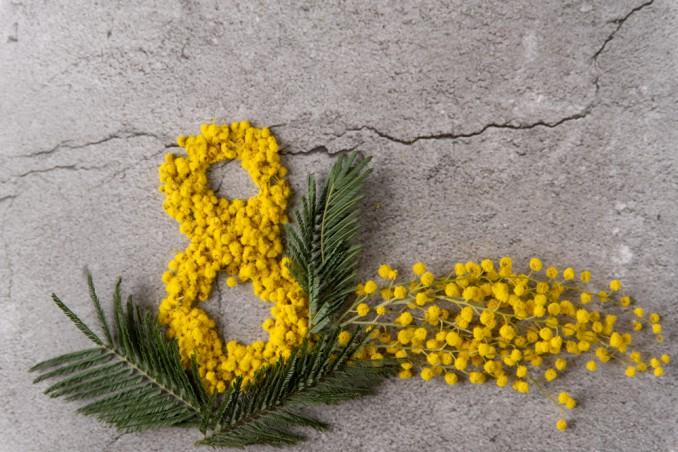 Il Decoupage Con La Mimosa Per La Primavera Che Comincia