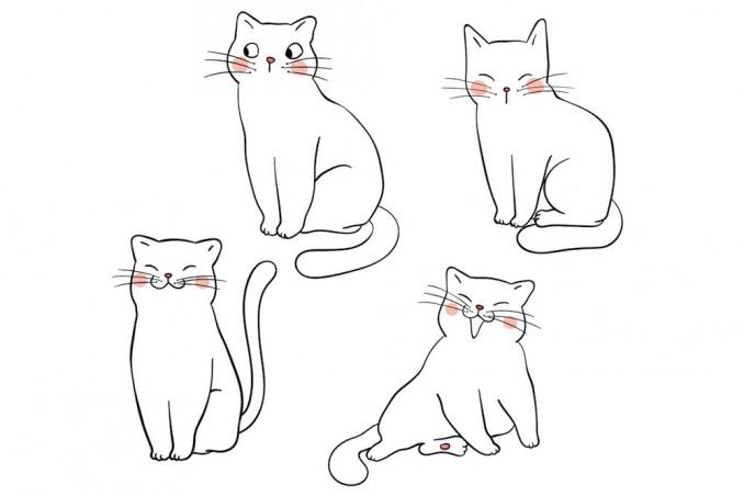 Come Disegnare Un Gatto Facilmente Donnad