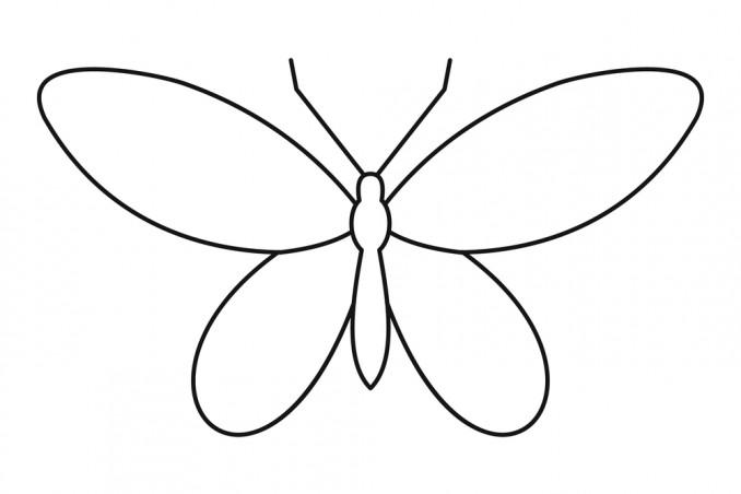 disegnare farfalla bambini