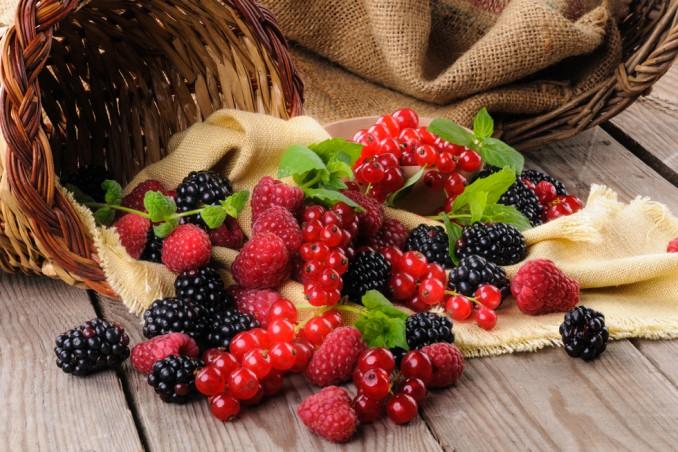 frutti bosco raccogliere, frutti bosco periodo